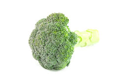 Broccoli isolated on a white background. Closeup broccoli isolated on a white background Royalty Free Stock Image