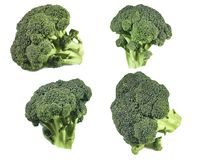 Broccoli isolated white background set royalty free stock images