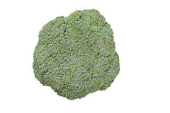 Broccoli isolated white background. Broccoli isolated on a white background, top view, visible texture of the cabbage Royalty Free Stock Photo