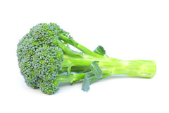 Broccoli isolated on white Royalty Free Stock Photos