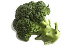 Broccoli isolated on white. Royalty Free Stock Photography