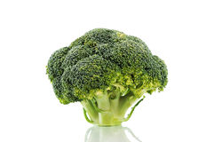 Broccoli isolated on white Royalty Free Stock Photo