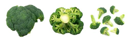 Broccoli isolated on white. Set of broccoli florets isolated on white background. Top view food photography royalty free stock photo