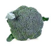 broccoli isolerade white Fotografering för Bildbyråer