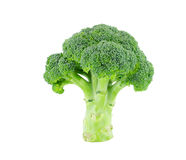 Broccoli isolerar på vit med den snabba banan Arkivfoto