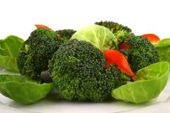 Broccoli légèrement cuit Image libre de droits