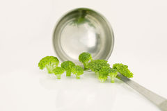 Broccoli and ladle. On a white background Royalty Free Stock Photography