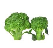 Broccoli lagad mat isolerad vit bakgrund Royaltyfri Fotografi