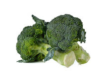 Broccoli with leaf on white Stock Photography