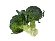 Broccoli with leaf on white Royalty Free Stock Images