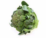 Broccoli with leaves Royalty Free Stock Photos