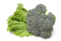 Broccoli and lettuce Royalty Free Stock Photo
