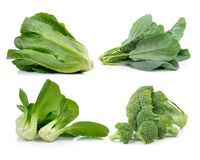 Broccoli ,lettuce , chinese broccoli ,cos, Bok choy  on white ba Royalty Free Stock Photos