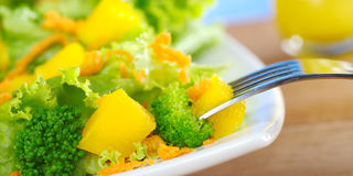 Broccoli-Mango-Carrot-Lettuce Salad Royalty Free Stock Image