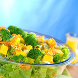 Broccoli-Mango-Carrot-Lettuce Salad Royalty Free Stock Photos