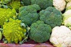 Broccoli on a market Royalty Free Stock Photo