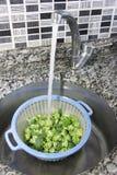 Broccoli naturali verdi in una colapasta blu di plastica del piatto fotografia stock