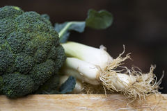Broccoli and onions Stock Photography