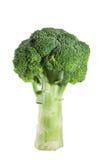 Broccoli op witte achtergrond Royalty-vrije Stock Fotografie