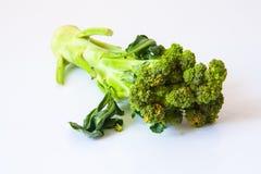 Broccoli op witte grond Royalty-vrije Stock Afbeelding