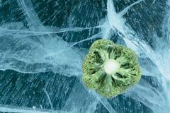 Broccoli på is Arkivfoton