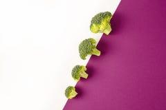 Broccoli på kulör violett vit bakgrund diagonalt Säsongsbetonade grönsaker i modern stildesignmodell arkivbilder