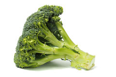 Broccoli på vit royaltyfria foton