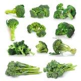 Broccoli på vit bakgrund Royaltyfria Foton