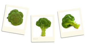 Broccoli photos Stock Images