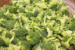 Broccoli. A picture of a bowl of steamed broccoli royalty free stock images