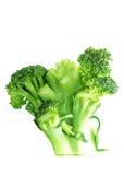 Broccoli puliti Immagine Stock