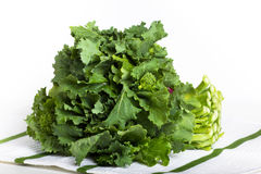 Broccoli Rabe. Greens on a white and green cloth royalty free stock photo