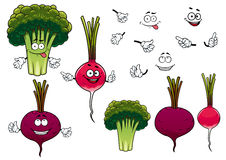 Broccoli, radish and beet vegetables. Cartoon green broccoli, crunchy radish and juicy beet vegetables characters, for agriculture or healthy vegetarian food Stock Photography