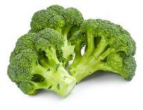 Broccoli. Ripe fresh broccoli isolated on white background royalty free stock images
