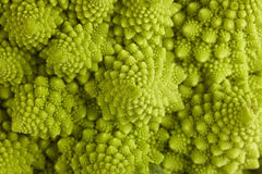 Broccoli romain Photographie stock