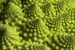 Broccoli romain Photo stock