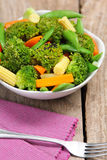 Broccoli salad with carrot ,baby corn and snap pea Royalty Free Stock Photo