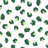 Broccoli seamless pattern. Stock Photography