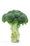 Broccoli Series 01 Stock Photos