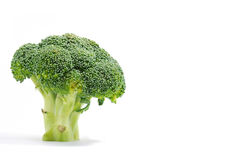 Broccoli Series 01 Stock Photography