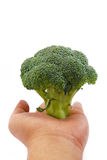 Broccoli Series 02 Stock Image