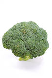 Broccoli Series 04 Royalty Free Stock Photos