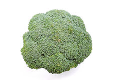 Broccoli Series 04 Stock Photos