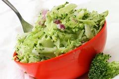 Broccoli Slaw. Bowl of fresh broccoli slaw with fork Stock Photography