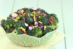 Broccolisallad 2 Fotografering för Bildbyråer