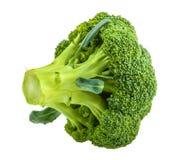 Broccoli som isoleras på vit utan skugga royaltyfria bilder