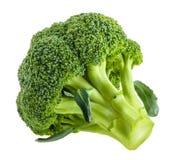 Broccoli som isoleras på vit utan skugga royaltyfria foton