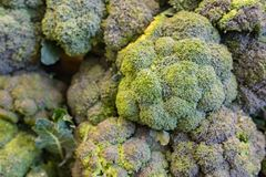 Broccoli som sett på bordlägga i ett lager Arkivbild