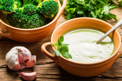 Broccoli soup made of fresh vegetables with garlic Royalty Free Stock Photography