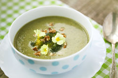Broccoli  soup with roasted walnuts Stock Image